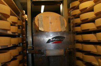Как хранить сыр в домашних условиях