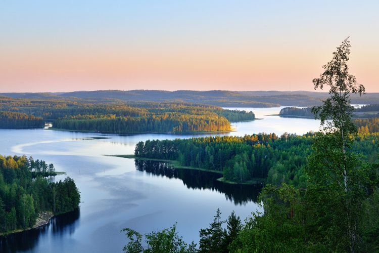Природные озера и леса Финляндии